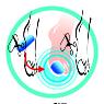 Защита большого пальца силиконовая  SIDAS  2 шт ( Gel Toe ) (SM)